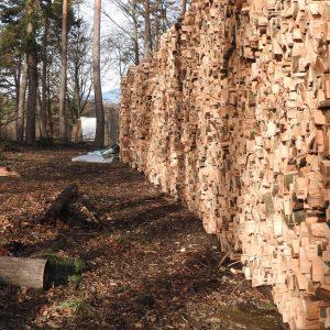 Brennholz / Cheminéeholz grünes Holz